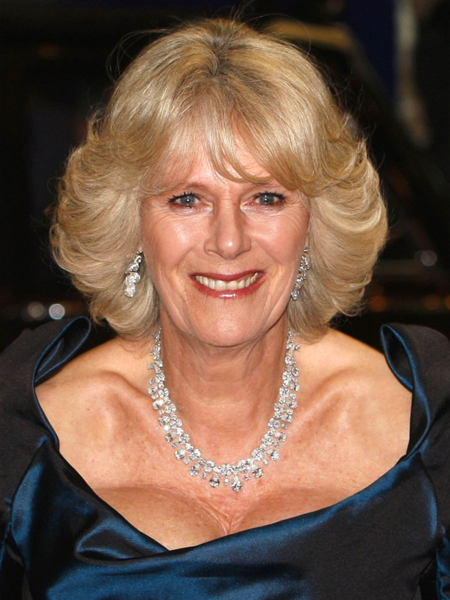 Recommend camilla parker bowles nackt very