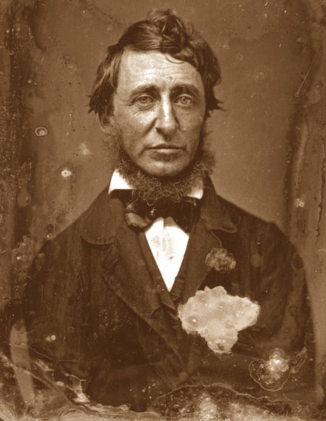 Foto di Henry David Thoreau