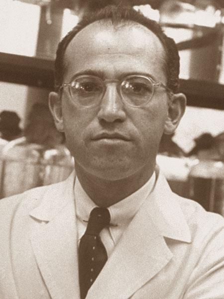 Foto media di Jonas Salk