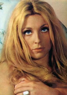 Foto media di Sharon Tate